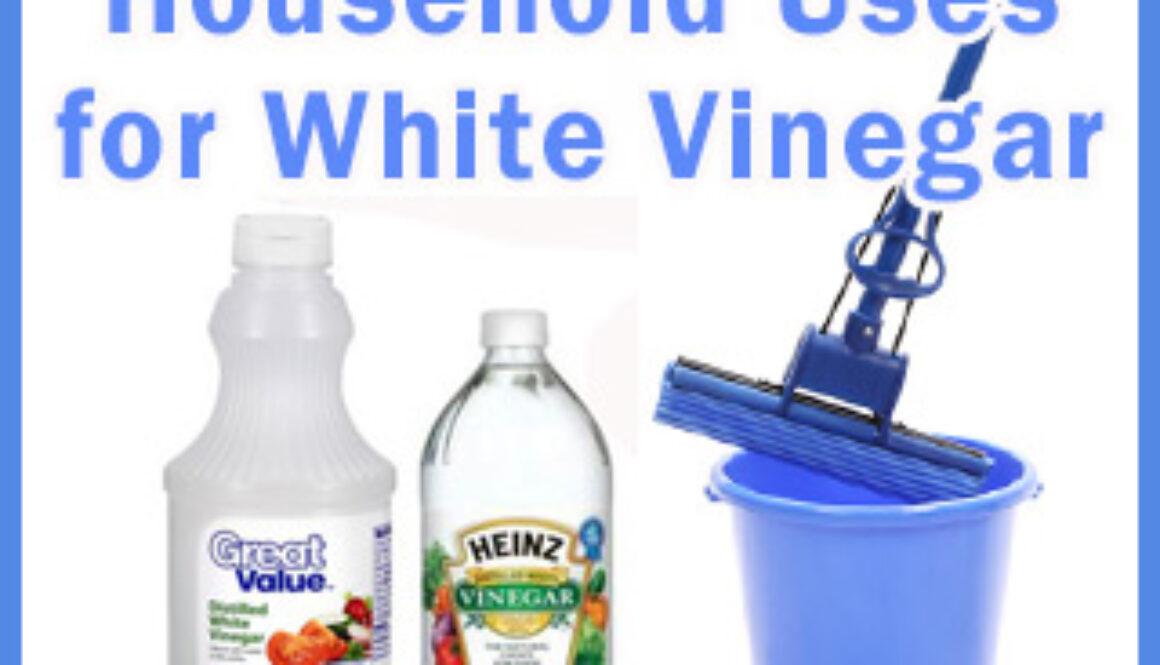 household-uses-vinegar
