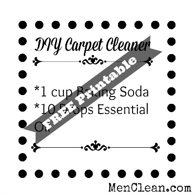 DIY-carpet-cleaner-2