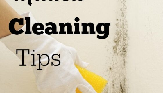 mildew cleaning tips