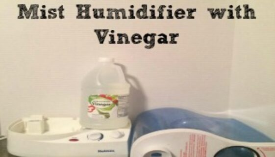 How To Clean A Cool Mist Humidifier with Vinegar is easy with these few tips.