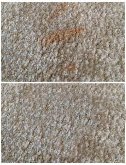 Easy tips on How to Clean a Wool Rug